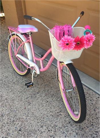 Susan's bike