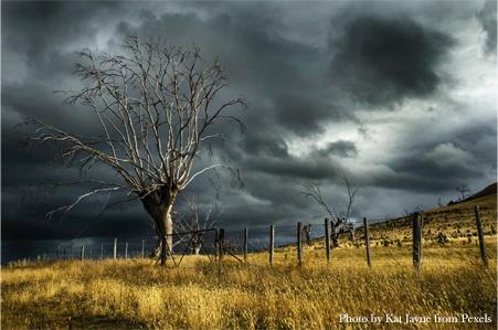 storm tossed